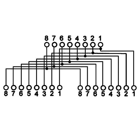 LAN Kabel Splitter Y-Adapter 8-polige Beschaltung